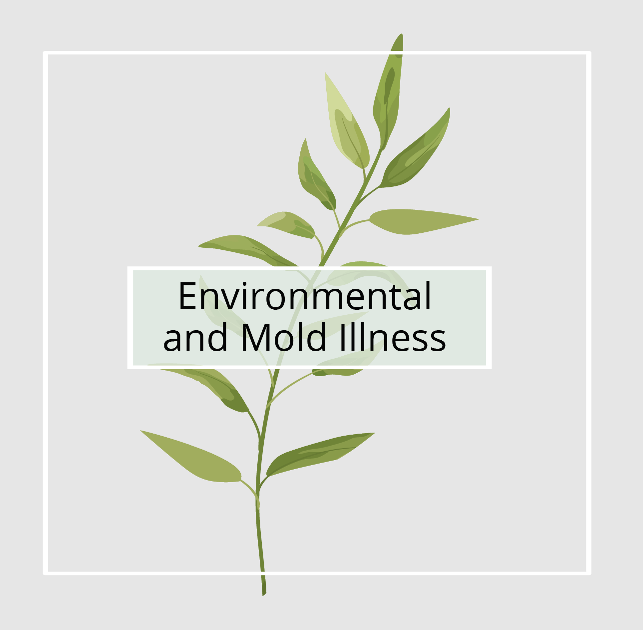 Environmental & Mold Illness - Nature Medica