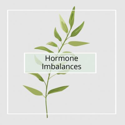 Hormone Imbalances - Nature Medica